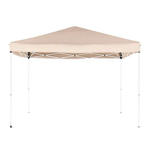 Quictent 10x10 Pop up Canopy Netting Screen House Sides